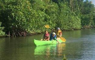 kayak mangroves merizo