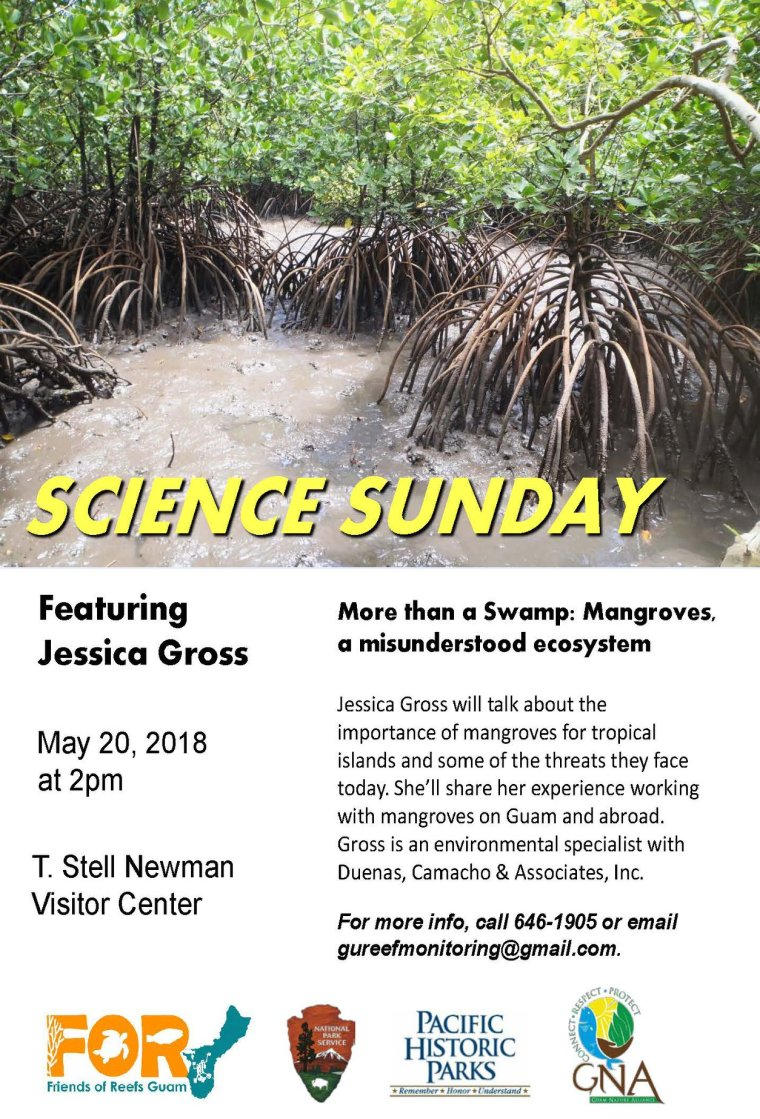 science sunday may 20