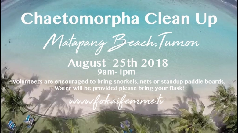 Chaetomorpha Beach Cleanup