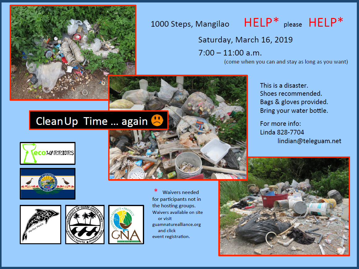 1000 steps cleanup flyer final.PNG
